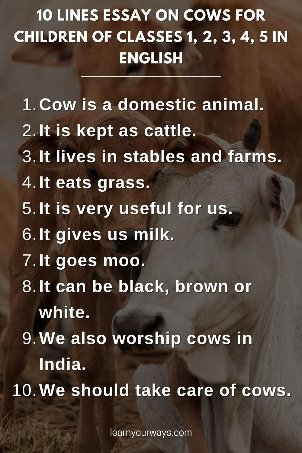 10 lines Essay on Cows