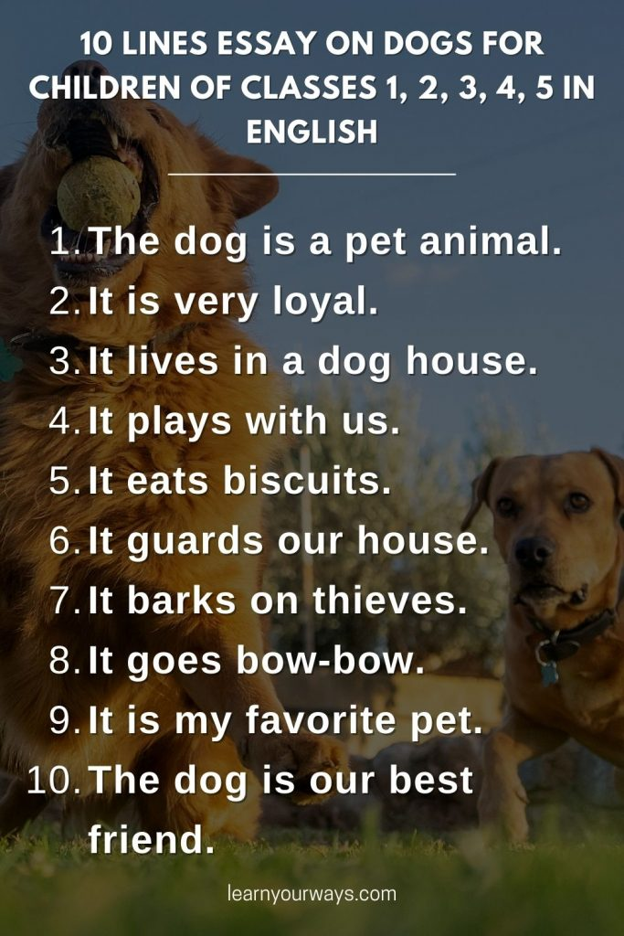 10 lines Essay on Dogs