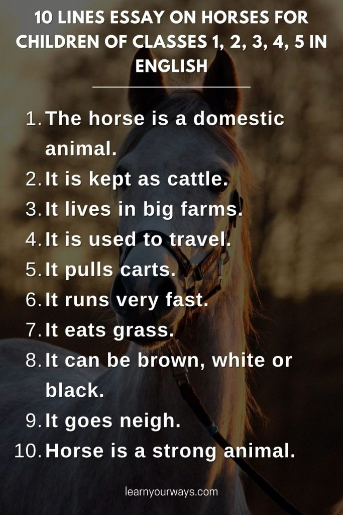10 lines Essay on Horses