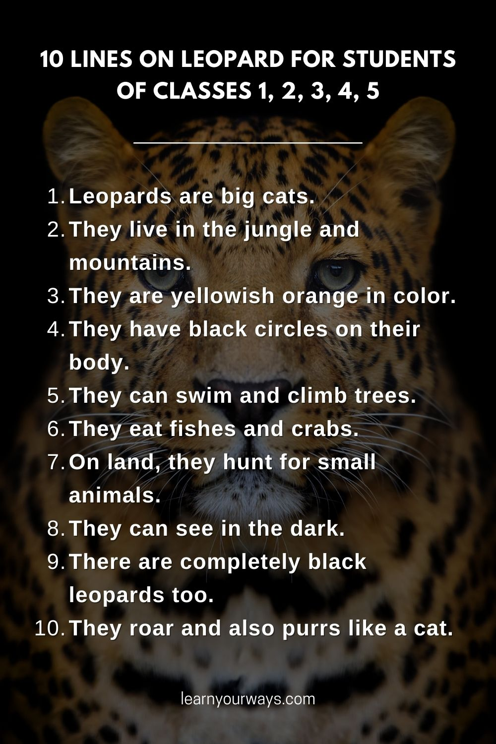 10 lines essay on Leopard